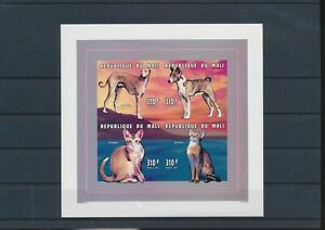 LO10254 Mali dogs pets animals cats imperf sheet MNH