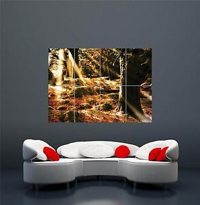 THE AUTUMN RED FOREST POSTER ART PRINT XXL GIANT WA276