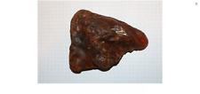 Natur Roh Bernstein Raw Amber 107 Gr