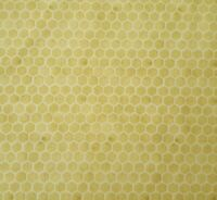 Quilting B's BTY J Wecker Frisch Quilting Treasures Honeycomb Tan