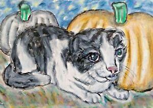 SCOTTISH FOLD CAT ACEO PRINT Mini Halloween Art 2.5 X 3.5 Signed Artist KSams