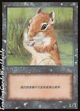 Squirrel Token // NM // JingHe: MtG 10th Anniversary Token // chin. // Magic