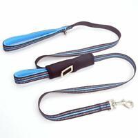 Dog Seat Belt Double Handles Dog Leash Reflective Strip Durable Safety Belt