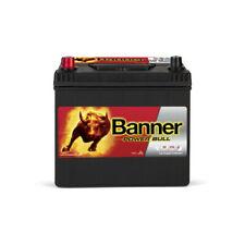 Banner Power Bull P6069 12v 60AH 510A