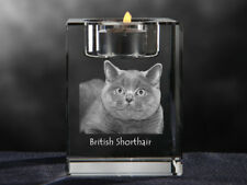 British Shorthair, crystal candlestick with cat, souvenir, Crystal Animals Ca