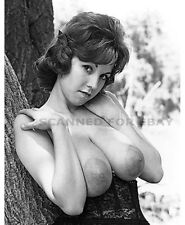 Model nude girl photo female print big busty breasts photo picture JULIE-tu