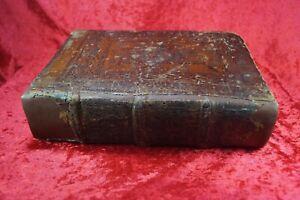 Albertus Magnus Postinkunabel Biblia Basel 1506 Selten!! Band 4
