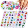 Mixed Dried Flowers Real Floral 3D Nail Art Decals UV Gel Polish Stickers Tips