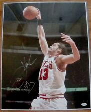 Joakim Noah Chicago Bulls Autographed Signed 16 X 20 Photo Picture JSA Florida