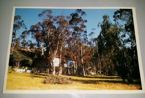 """The Eames House in Pacific Palisades Postcard 4.25""""x6.25"""" by Charles & Ray Eames"""