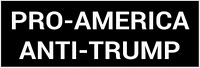 BUMPER STICKER:  PRO-AMERICA, ANTI-TRUMP PRESIDENT 2020 BERNIE WARREN HARRIS BET