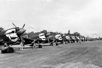 WWII B&W Photo P-40 Warhawk CBI Theatre 80th FG  WW2 World War Two China /5074