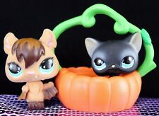 Littlest Pet Shop RARE BLACK CAT #994 FUZZY BAT #820 PUMPKIN HALLOWEEN ~GIFT BAG