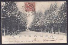 ALESSANDRIA CITTÀ 142 Cartolina viaggiata 1901