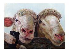 Selfie Lucia Heffernan Sheep Art Print