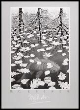 MC Escher Drei Welten Poster Kunstdruck Bild im Alu Rahmen schwarz 70x50cm