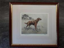 Henry Wilkinson RED SETTER DOG  Etching Signed Ltd edition  Framed
