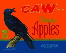 Medford Oregon Caw Crow Raven Black Bird Apple Fruit Crate Label Art Print