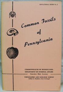 COMMON FOSSILS OF PENNSYLVANIA BOOKLET 1962 VINTAGE BY DONALD HOSKINS