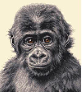 GORILLA BABY ~ Full counted cross stitch kit (Monkey, Ape, Primate)*Jann Designs
