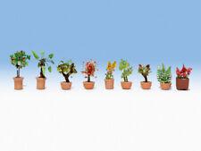Noch H0 N 14082 Ornamental Plants in Large Flowerpots OB