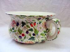 Small decorative chamber pot planter in bramble hedgerow design