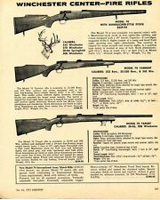 1972 Print Ad of Winchester Model 70 Varmint & Target Center-Fire Rifle