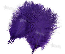 Large Ostrich Feathers Plume 10
