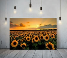 YELLOW VIBES 21- FRAMED CANVAS WALL ART PICTURE PAPER PRINT- SUNFLOWERS