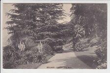 AK Bellagio, Lombardia, Giardino Villa Meizi, um 1910