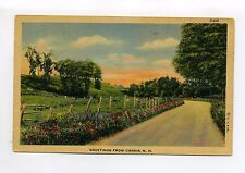 Greetings from Candia NH, linen vintage postcard, rural road, flower, cows
