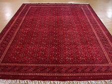 8 x 12 AFGHAN Turkmen Tribal Hand Knotted Wool REDS NAVY NEW Oriental Rug