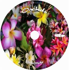 How to Grow Orchids CD DVD 8 video tuts 49 books greenhouse pots at home easy
