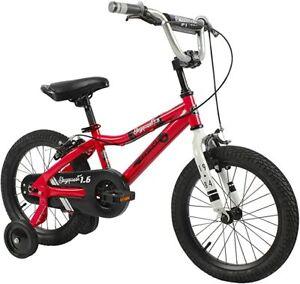 Duzy Customs Skyquest Kids Bike Boys and Girls16 Inch Wheels, Red