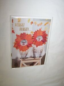 Papyrus Thanksgiving Greeting Card & Envelope; Forget Turkey Cats