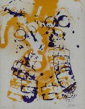 Fernandez ARMAN-a mano con firma farblithographie, edizione 300, ottimo stato!