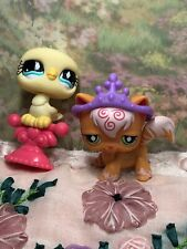 Littlest Pet Shop #511 #512 pink and orange cat longhair yellow bird pet pairs