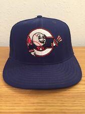 Springfield (Illinois) Capitals Defunct Minor League Baseball Team New Cap