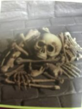 Halloween  Large bag of Bones Life size - New