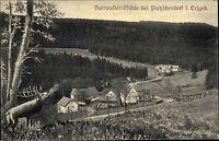 Pretzschendorf Sachsen seltene AK ~1910 Beerwald Mühle Erzgebirge alte Postkarte