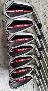 Hippo Right Hand Iron Set 5-SW True temper shaft brand new