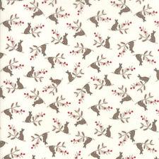 Peter Rabbit/'s la señora Bigarilla-Tapicería de tela Cojín//Winkle Panel Craft