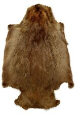 "AuSable Brand Professionally Tanned Beaver Fur 36""x22"" Approx - 1 Pelt"