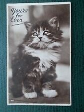VINTAGE CAT POSTCARD - YOURS FOR EVER - CATS - KITTENS