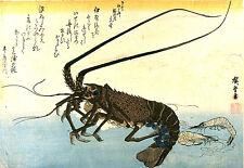 8 Japonais Bloc de bois Poisson Imprimés by Hiroshige Repro Vintage Giclée