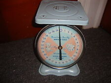 American Family Nursery Scale Blue Rare