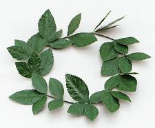 Green Leaf Laurel Headband Julius Caesar Goddess Roman Toga Party Fancy Dress