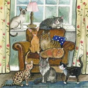 Cat House Blank Card - Alex Clark Kraft
