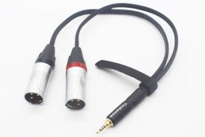 2.5mm to Dual XLR Male Adapter Cable 1 FT 0.3M for AK240 AK380 AK320 DP-X1 X5III