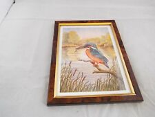 Framed Picture Of A Kingfisher Print ?